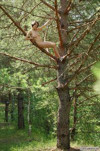 Rimma-Climber-37a5dqsx41.jpg